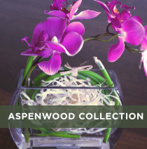 Aspenwood collection